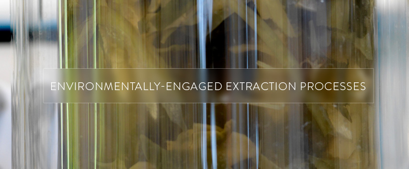 Environmentally-engaged Extraction Process